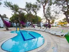 Comfort Beach Resort image